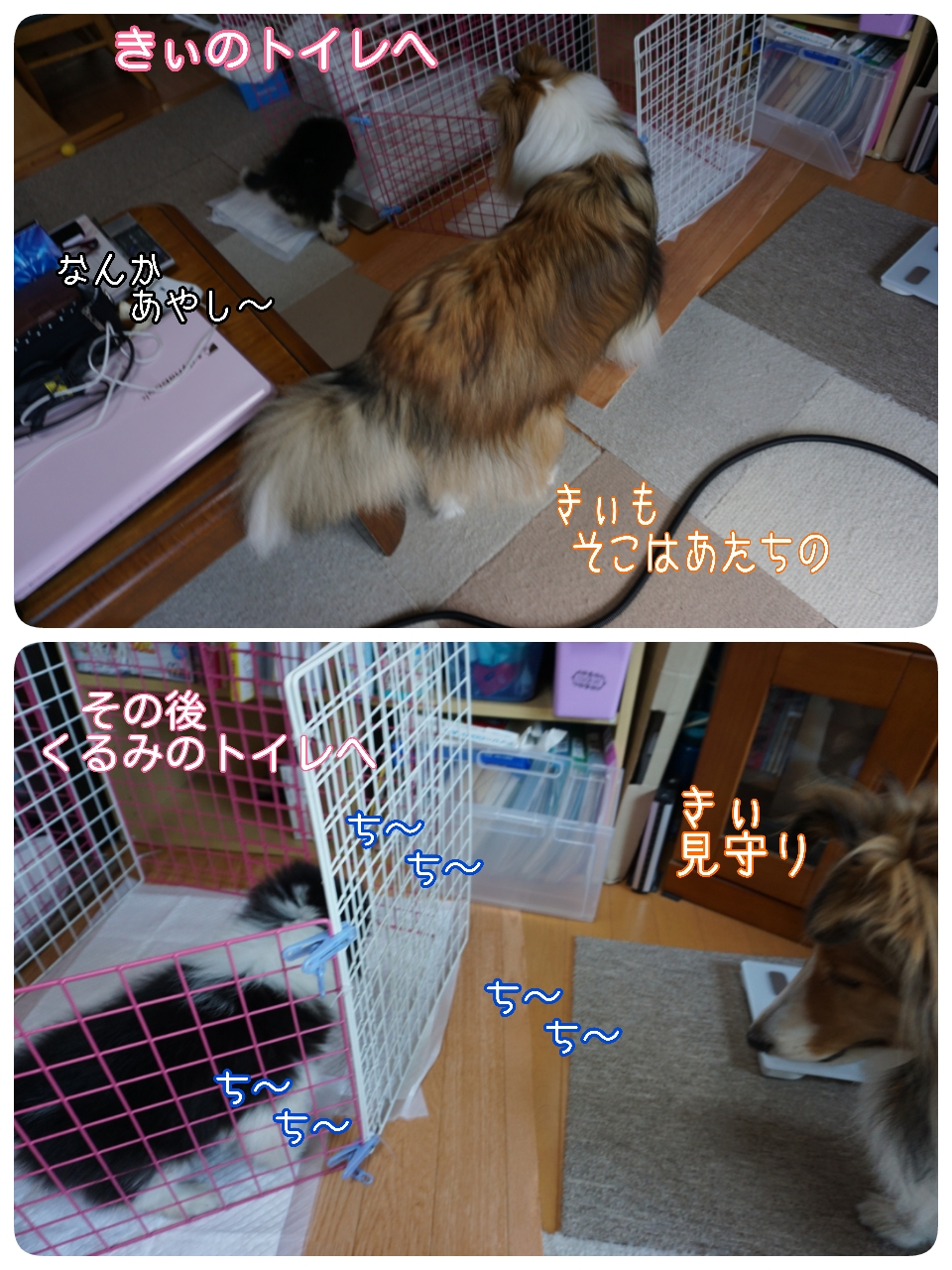 2015-05-07-12-48-07_deco.jpg