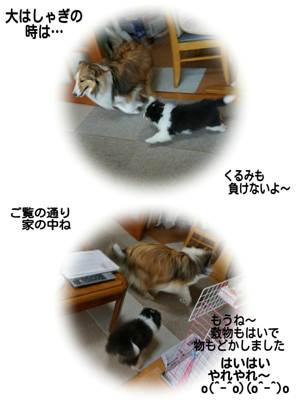2015-05-08-05-13-15_deco.jpg