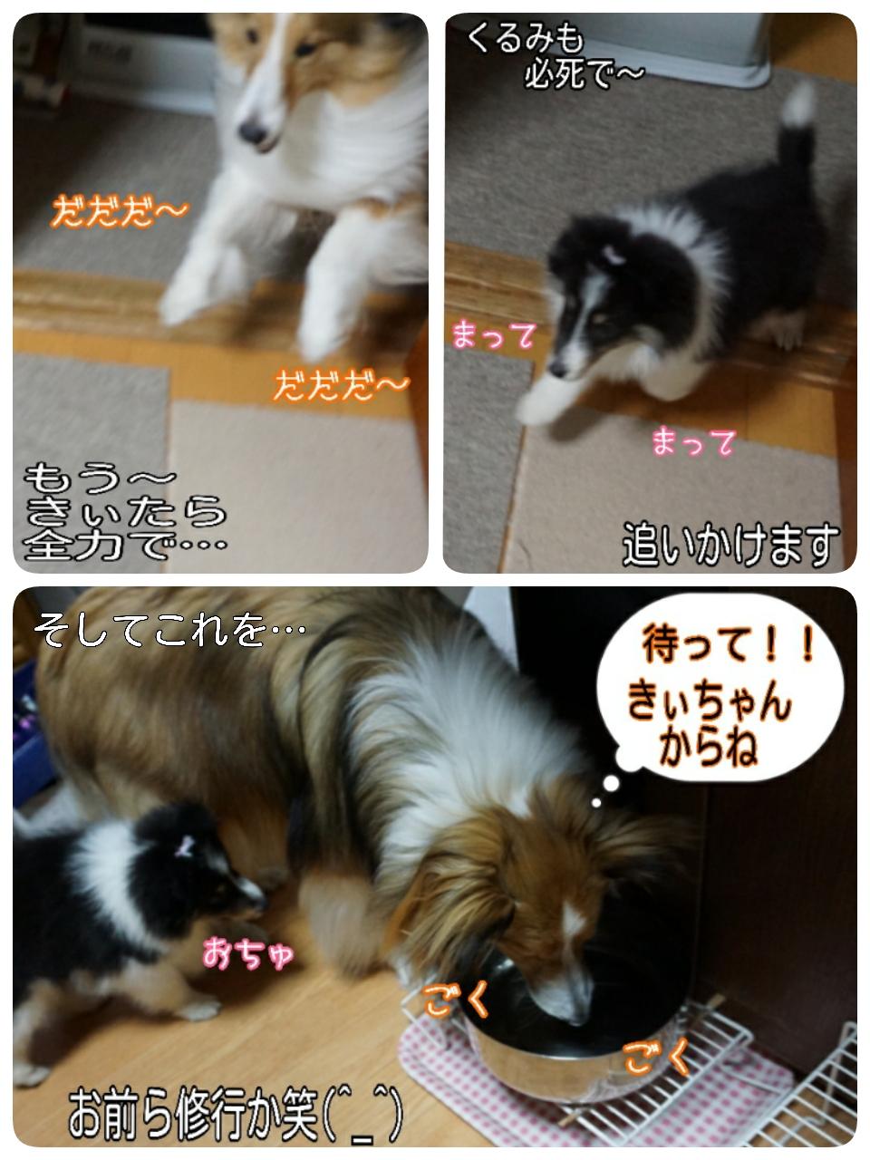 2015-05-09-05-50-17_deco.jpg