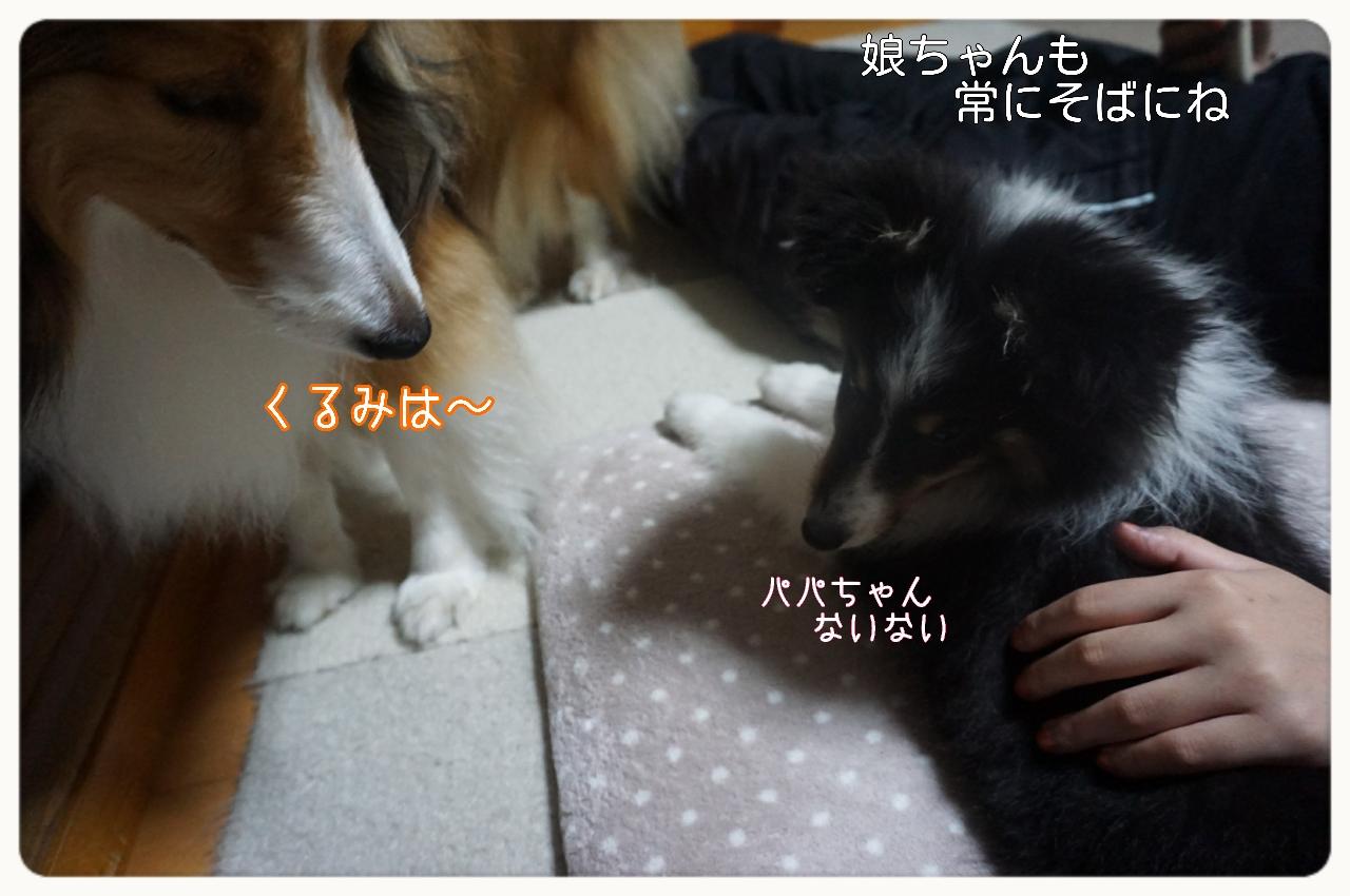 2015-06-02-05-52-28_deco.jpg