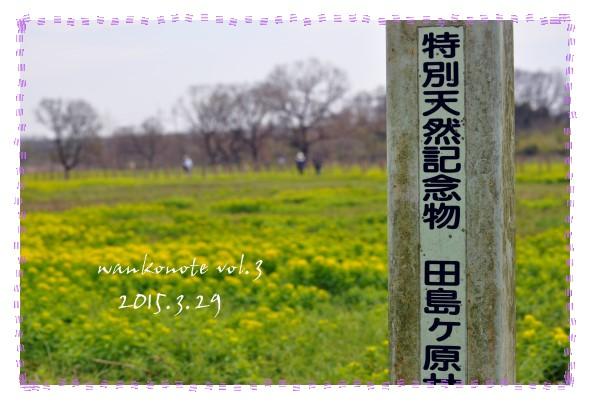 20150329103.jpg