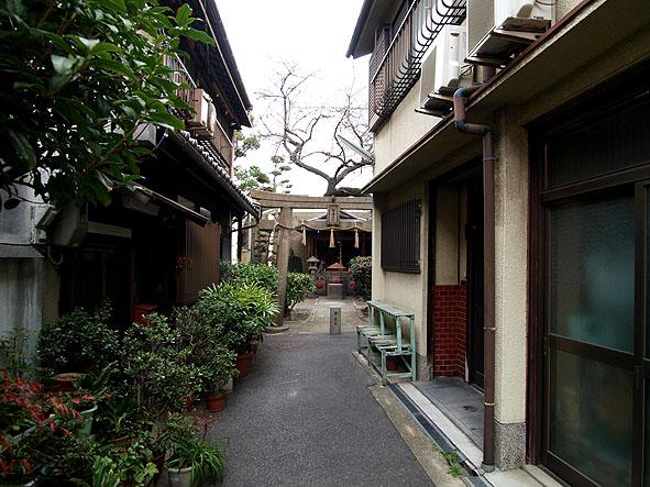matsunokidaimyoujin-01
