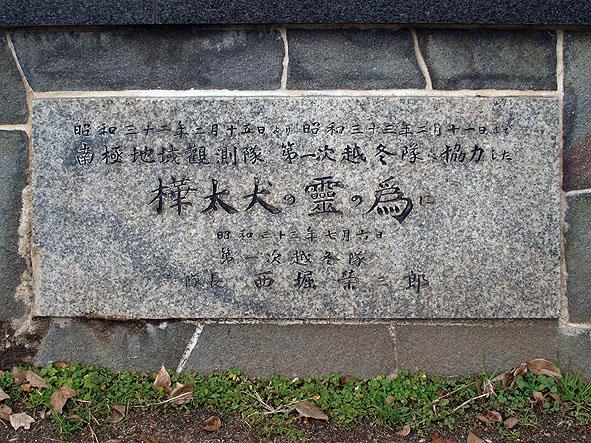 sakai-nankyoku-2