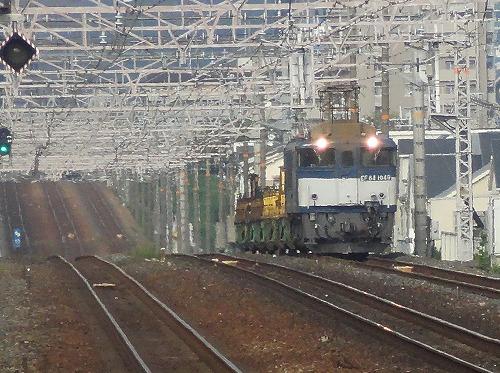 DSC02339-2.jpg