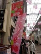 ふなピー魚町銀ぶら☆さくらまつり01