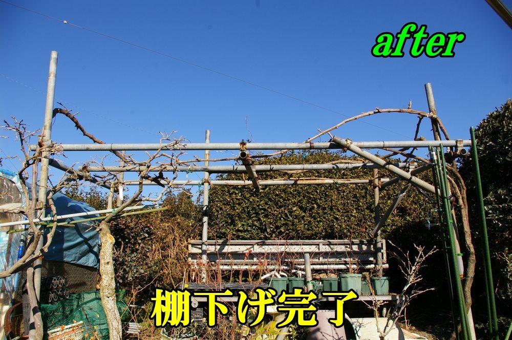 1B_syain0118c4.jpg
