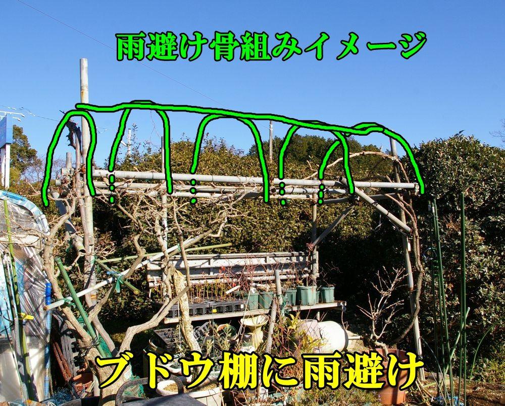 1B_syain0118c5.jpg