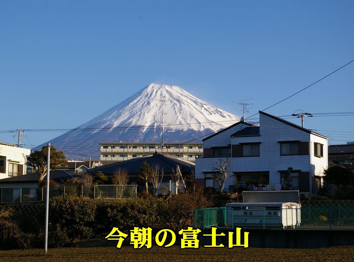 1F_fujisan0214_0c1.jpg