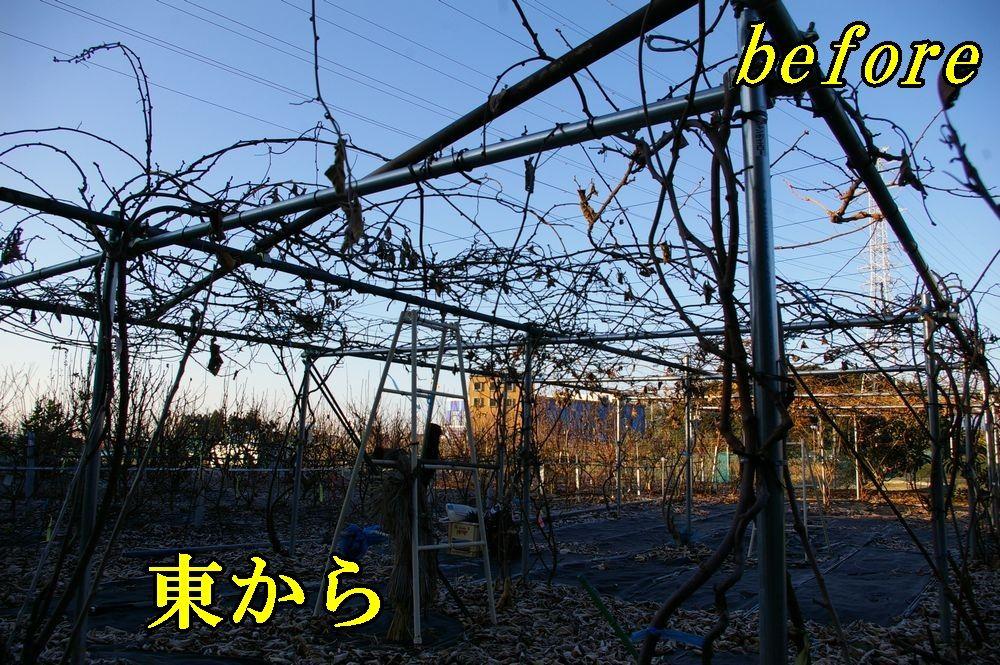 1K_before1226c1.jpg