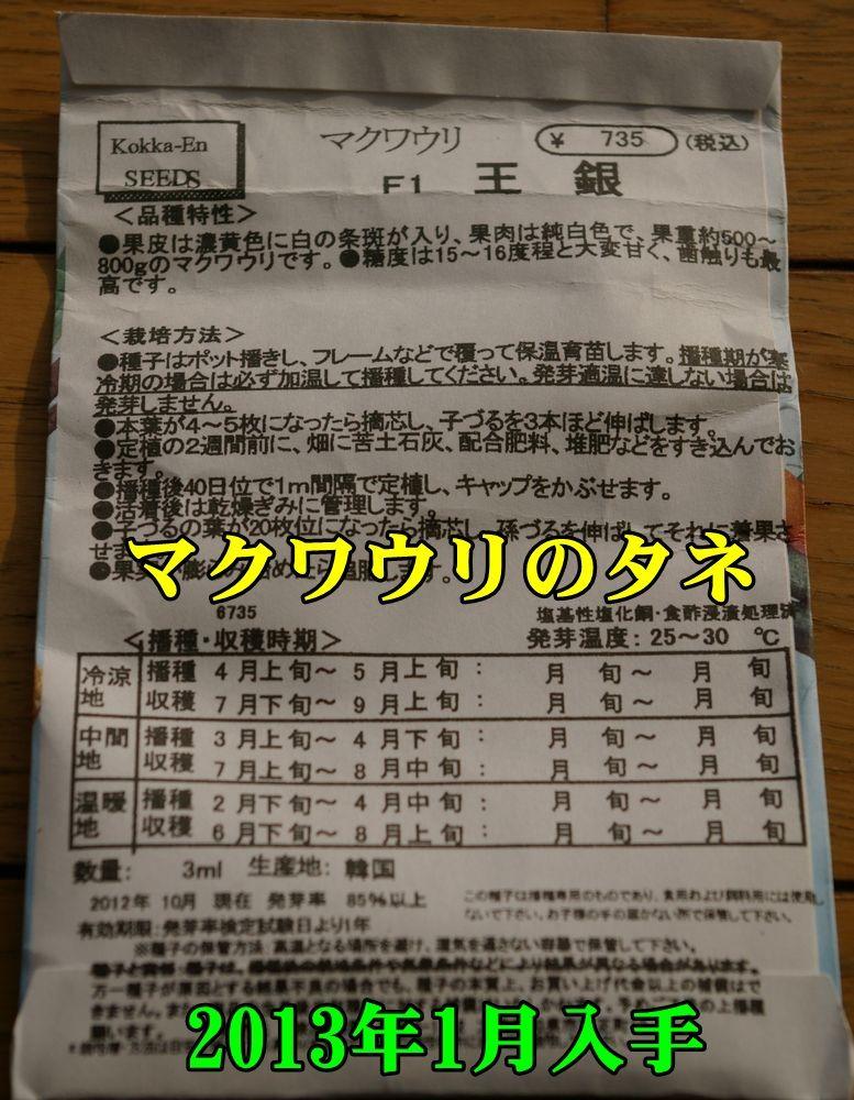 1T_makuwa0221_0c1.jpg