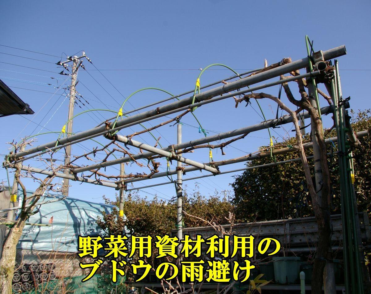 1UB_ameyoke0127c3.jpg