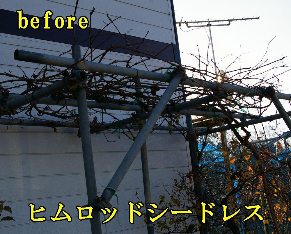1himuro1224c2.jpg