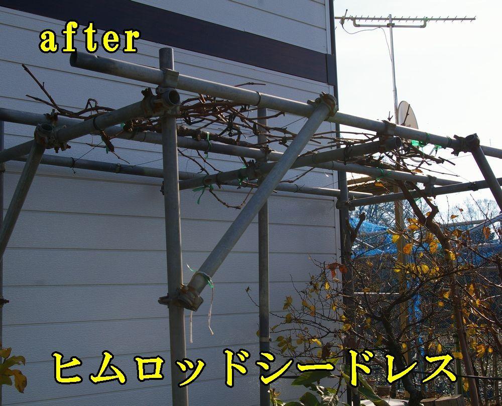 1himuro1224c3.jpg