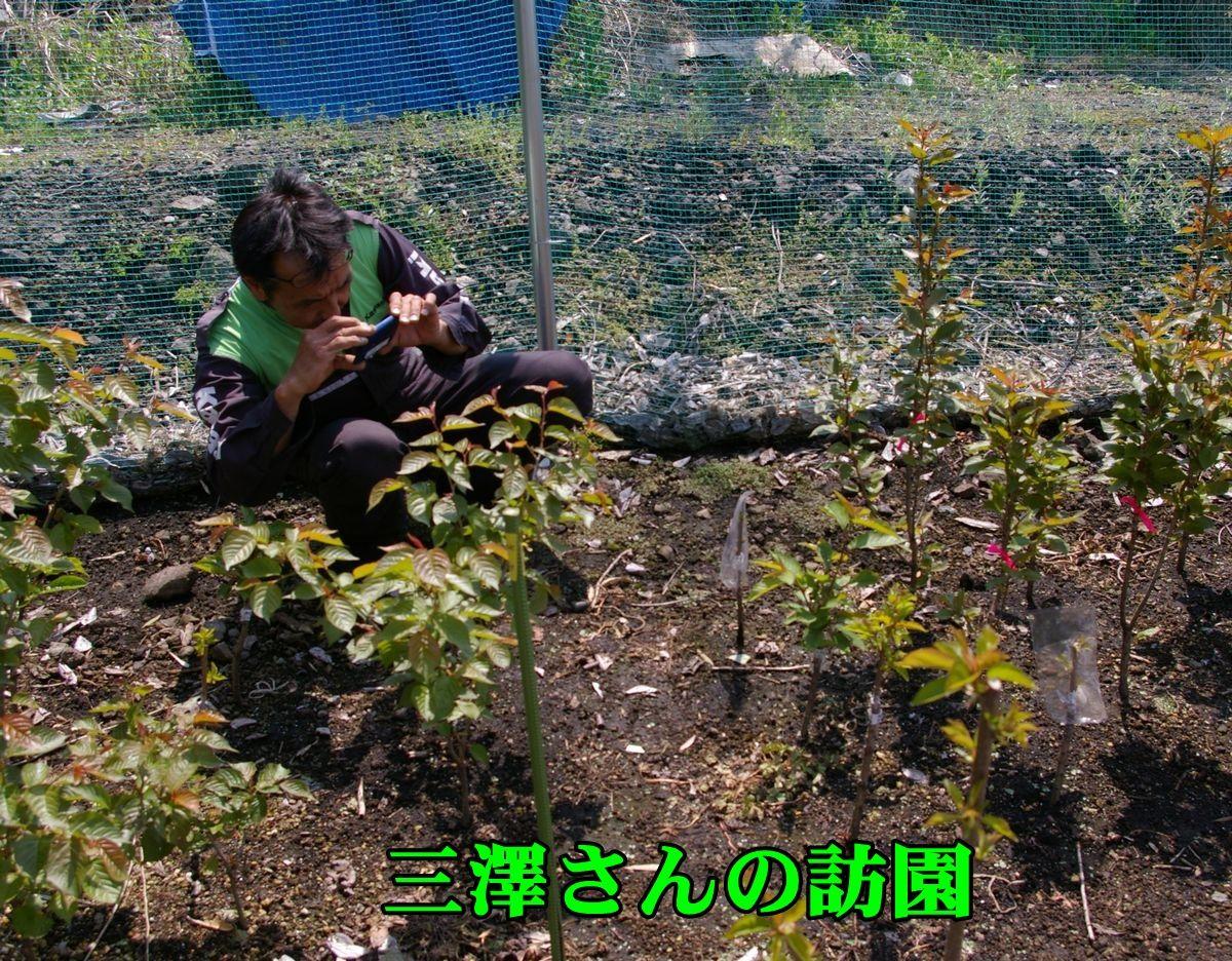 1misawa150416_001.jpg
