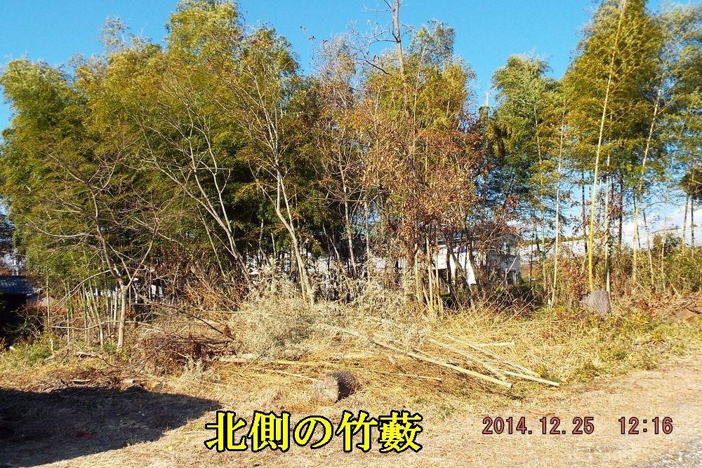 1takeyabu1225c1.jpg