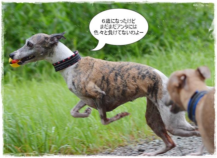 20150708-6.jpg