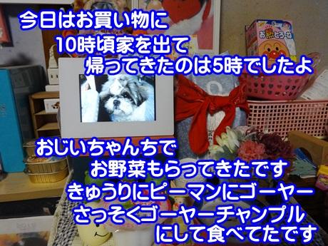 0718-05_20150718201606bd6.jpg