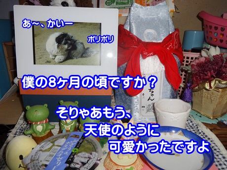 0723-01_20150723150000e84.jpg