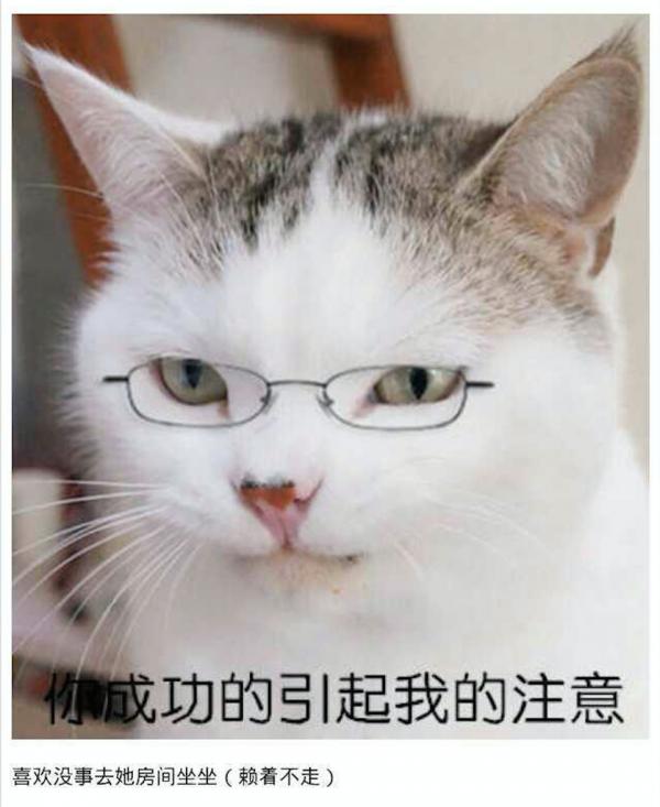 黄婷婷さん9