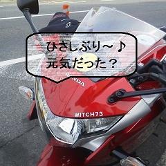 P1100394.jpg