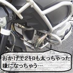 P1100396.jpg