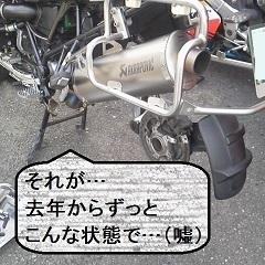 P11003971.jpg