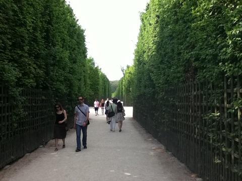パリ ベルサイユ宮殿庭園3