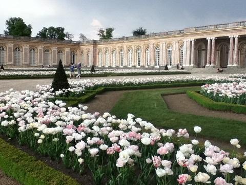 パリ ベルサイユ宮殿庭園6