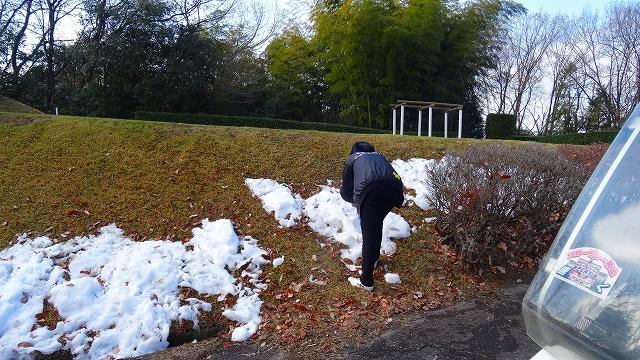 すずむしと雪