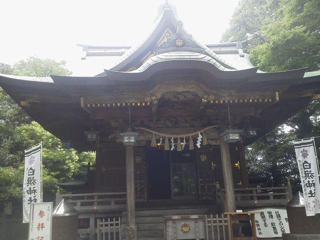 白幡神社.JPG