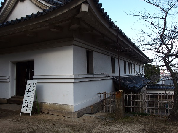 2015_0111_104020-P1116151.jpg