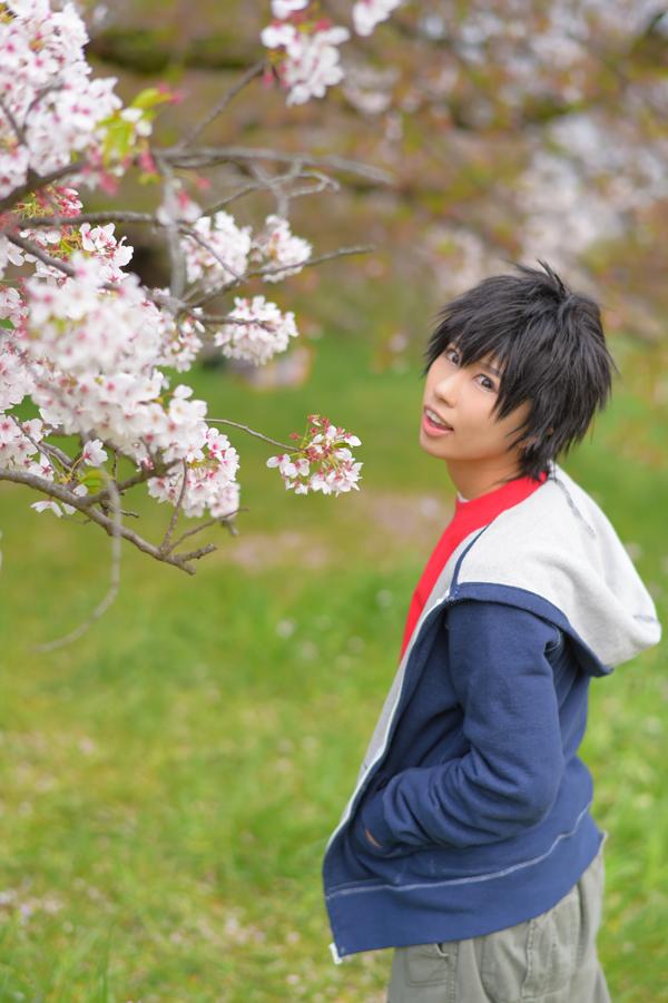 010BH6_sakura.jpg