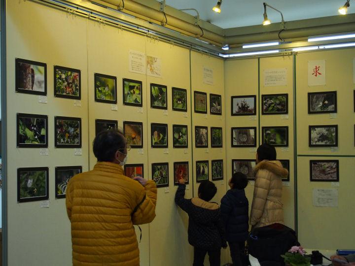 写真展2015-OMD06353