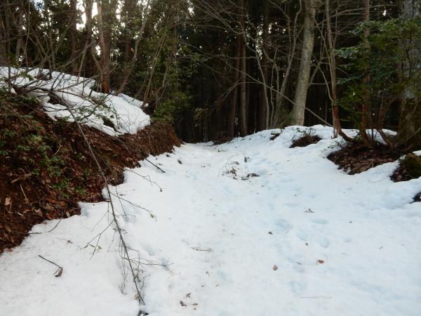 賤ヶ岳登山道雪