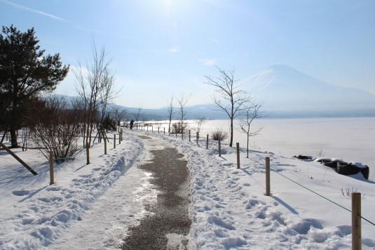 山中湖アイスキャンドル 道