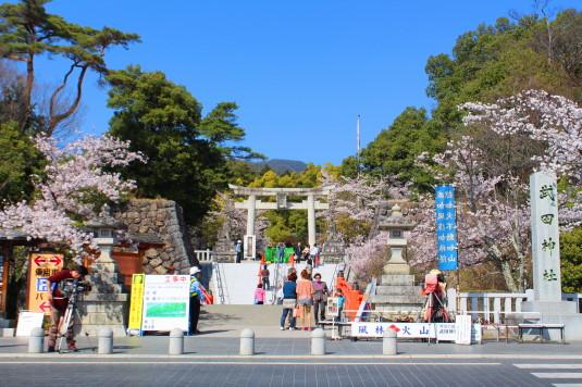 桜 武田神社 正面