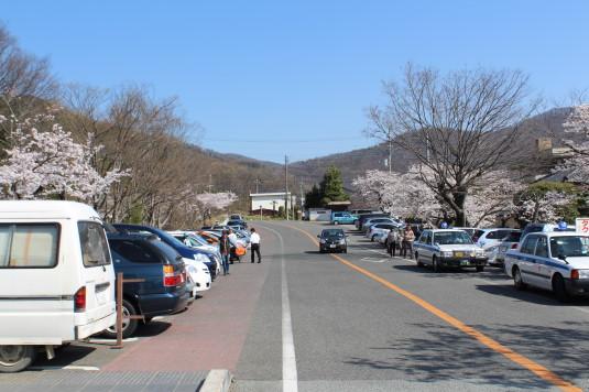桜 武田神社 駐車場