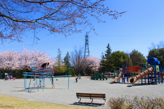 桜 滝沢川公園 総合公園 遊具