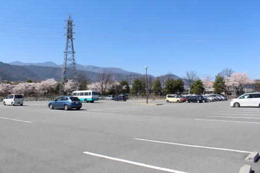 桜 滝沢川公園 駐車場