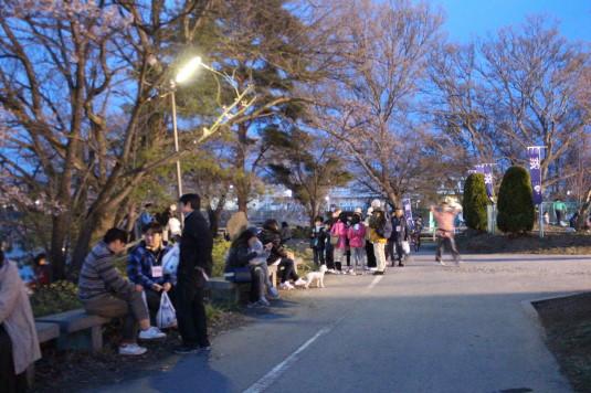 長坂夜桜祭り 会場 様子