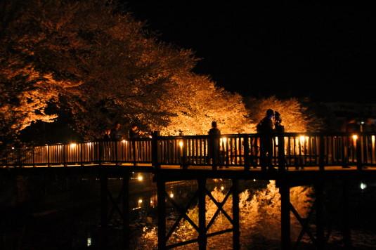 長坂夜桜祭り 外観