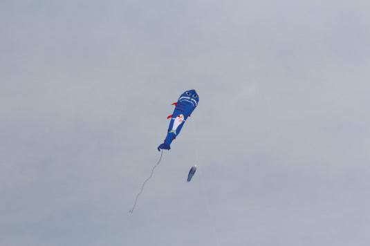 凧上げ祭り 凧 なぞ