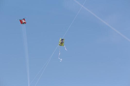 凧上げ祭り コンテスト 絡まる