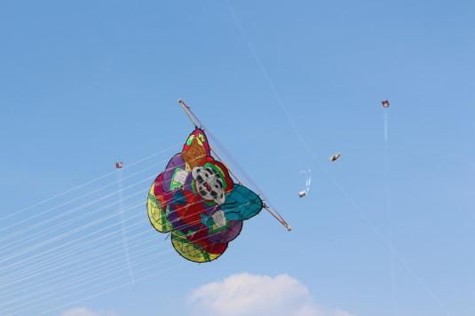 凧上げ祭り 凧 うなり
