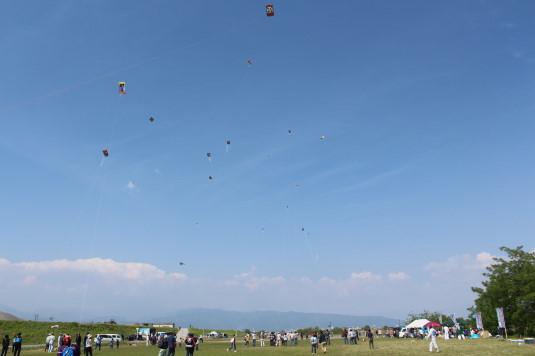 凧上げ祭り コンテスト 凧上げ全体