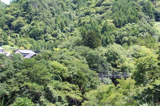 久保の吊り橋 野原吊り橋