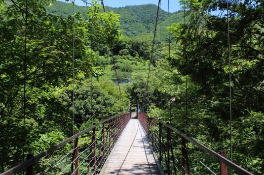 久保の吊り橋 野原吊り橋 橋の上