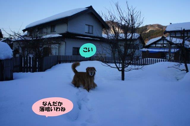 DSC03600.jpg