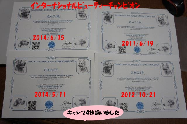 DSC04626.jpg