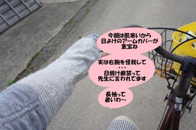 DSC06691.jpg